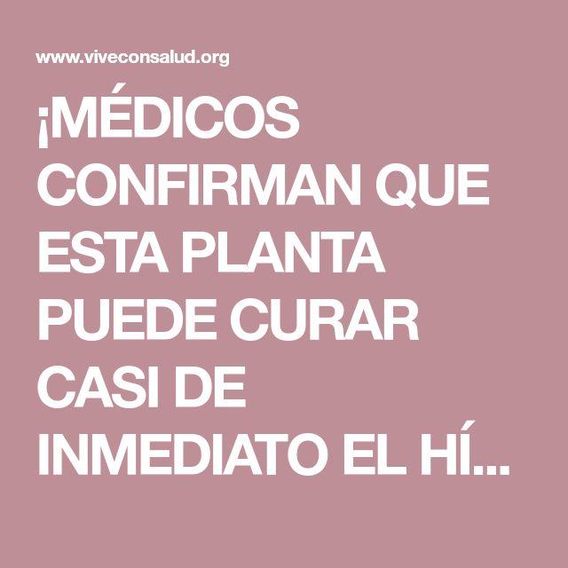 ¡MÉDICOS CONFIRMAN QUE ESTA PLANTA PUEDE CURAR CASI DE INMEDIATO EL HÍGADO, LA VESÍCULA Y DESINFLAMAR LOS INTESTINO | Vive Con Salud