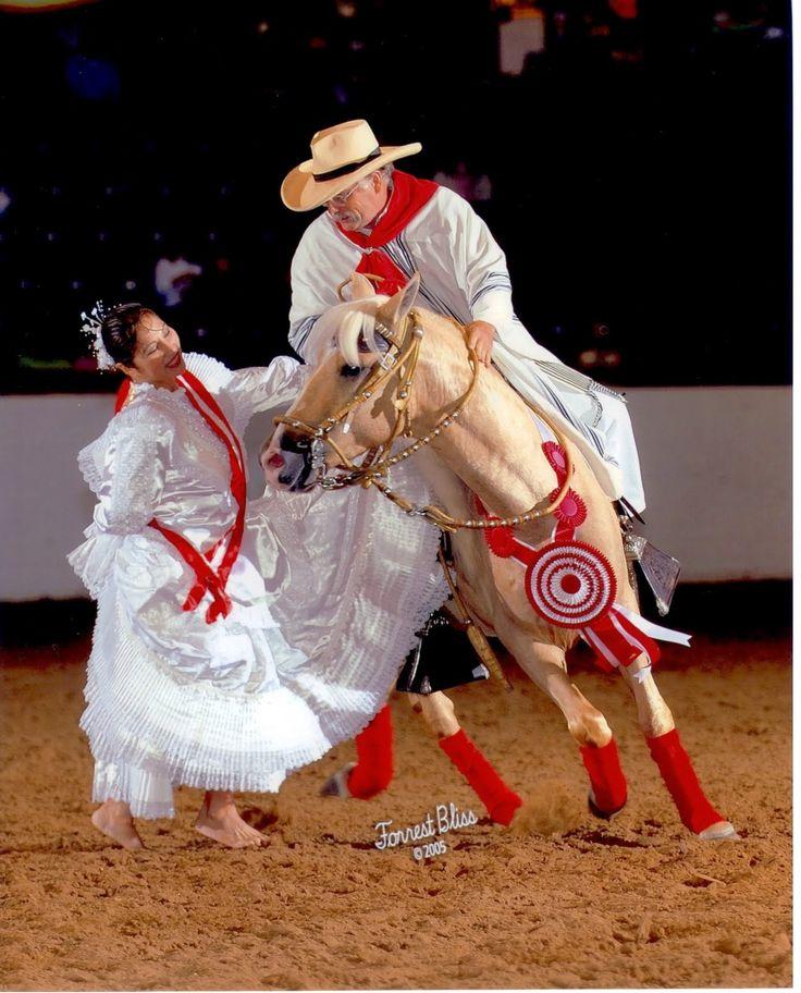 ¡Pensando en las maravillas del Perú! Gente, cultura, naturaleza: El caballo de paso peruano- Maravilla del mundo equino