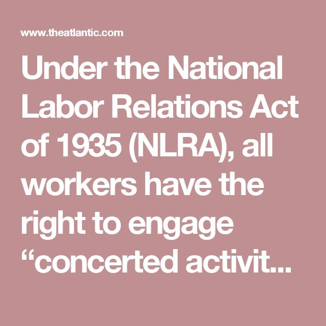 Best  National Labor Relations Act Ideas On   The Pig