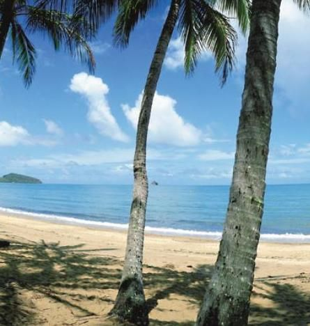Leisure Holidays in Palm Cove, your ideal beach holidays. http://www.ozehols.com.au/holiday-accommodation/queensland/cairns-area/palm-cove #travel #holidays #australia