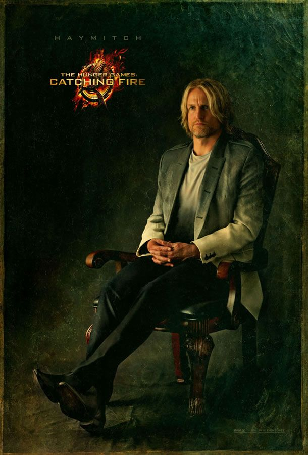 (Haymitch) The Hunger Games: Catching Fire Character Poster