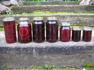 From left to right: sask-peach preserve, canned saskatoons, sask-rhubarb juice, sask-raspberry juice, saskatoon chutney, saskatoon syrup, saskatoon jelly