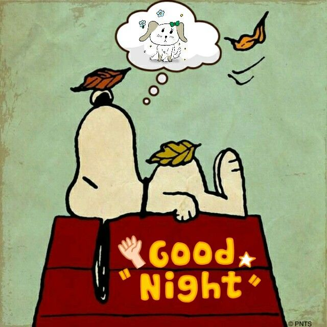 21 Best Images About Good Night On Pinterest
