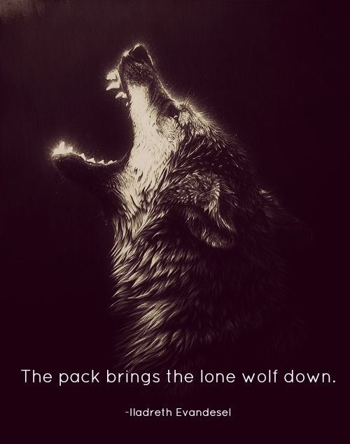 Lone wolf quotes - photo#17