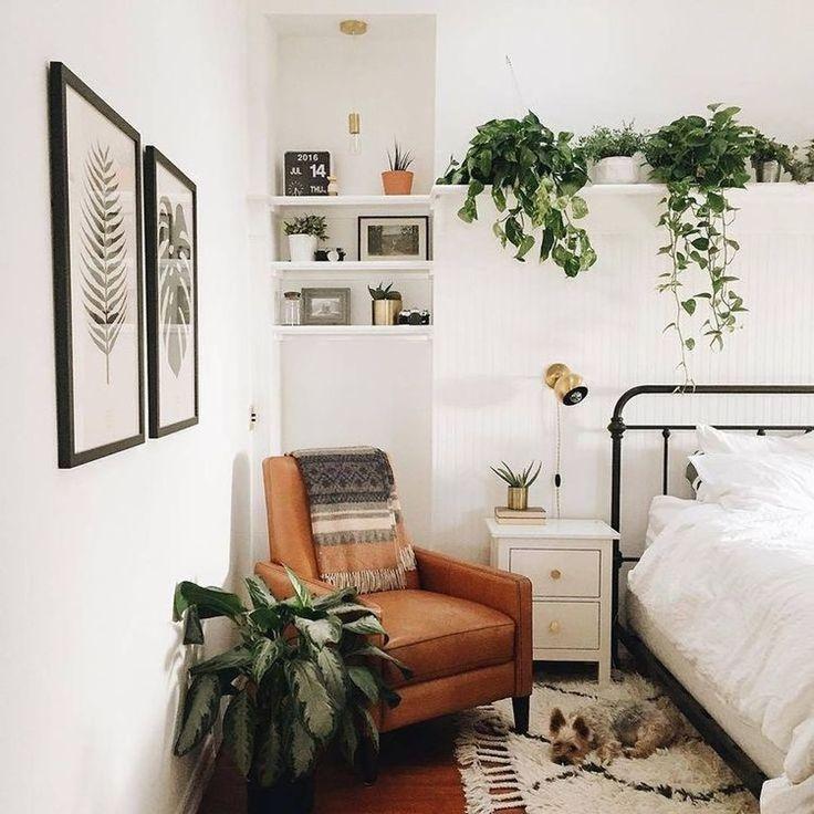 Oltre 25 fantastiche idee su Piante della camera da letto su ...