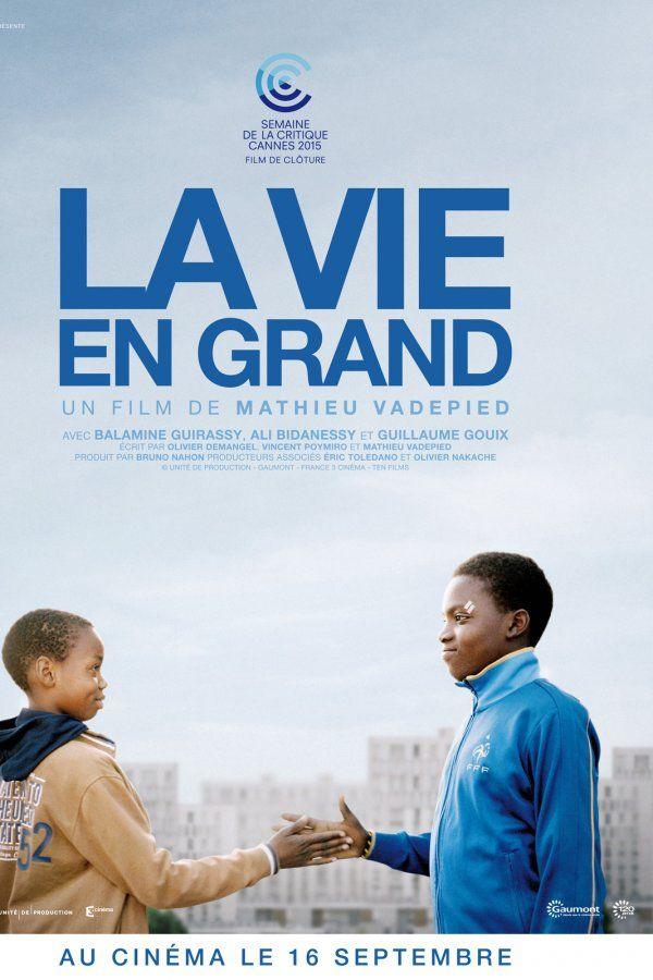 La Vie en grand - film 2015 : les séances, le synopsis, les photos et les bandes-annonces du film, le casting… - Orange Cinéma