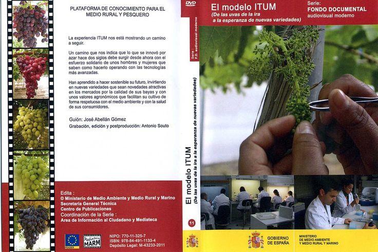 DVD sobre la experiencia ITUM.