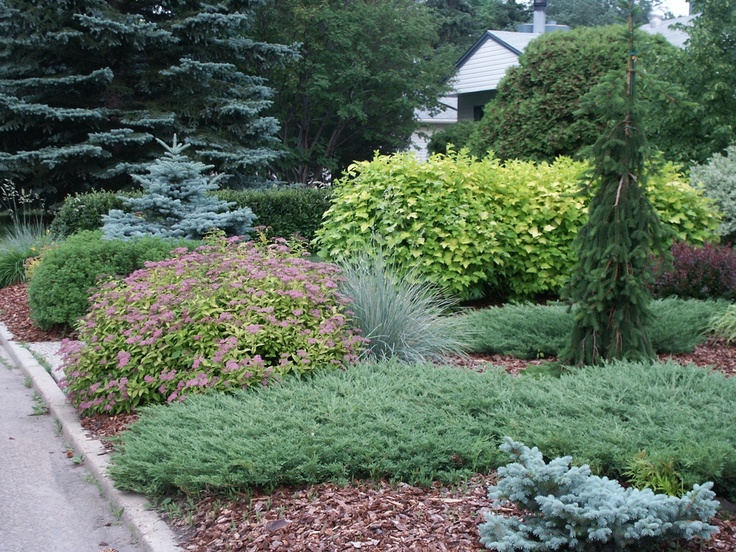 Garden Ideas Edmonton 23 best edmonton neighbourhoods images on pinterest