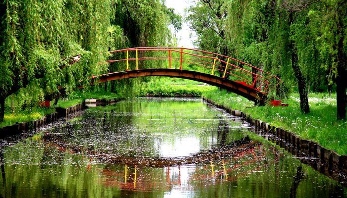 Как сделать мостик на пруду своими руками: фото мостиков через пруд, технология монтажа