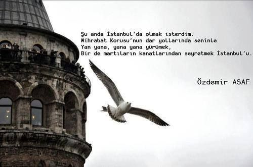 Şu anda İstanbul'da olmak isterdim. Mihrabat Korusu'nun dar yollarında seninle Yan yana, yan yana yürümek, Bir de martıların kanadından seyretmek İstanbul'u.Özdemir Asaf
