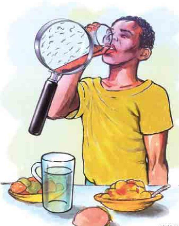 Colera -  Cólera: Es una enfermedad producida por una bacteria, el vibrio-choleroe . Se adquiere por ingestión de agua o de alimentos (fruta, verdura, pescados, mariscos, etc.) contaminados por la bacteria. También, puede contraerse por falta de higiene personal, el inadecuado manejo del agua y de los al...