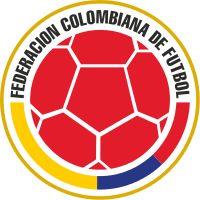 Federacion Colombiana de Futbol - Shirt badge/Association crest