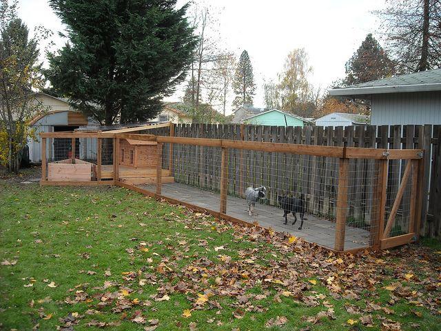 Backyard Dog Run Ideas dog run Find This Pin And More On Backyard Bliss Dog Runs