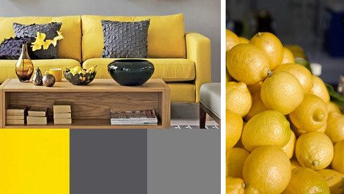 Belle harmonie contrastée : du gris et du jaune
