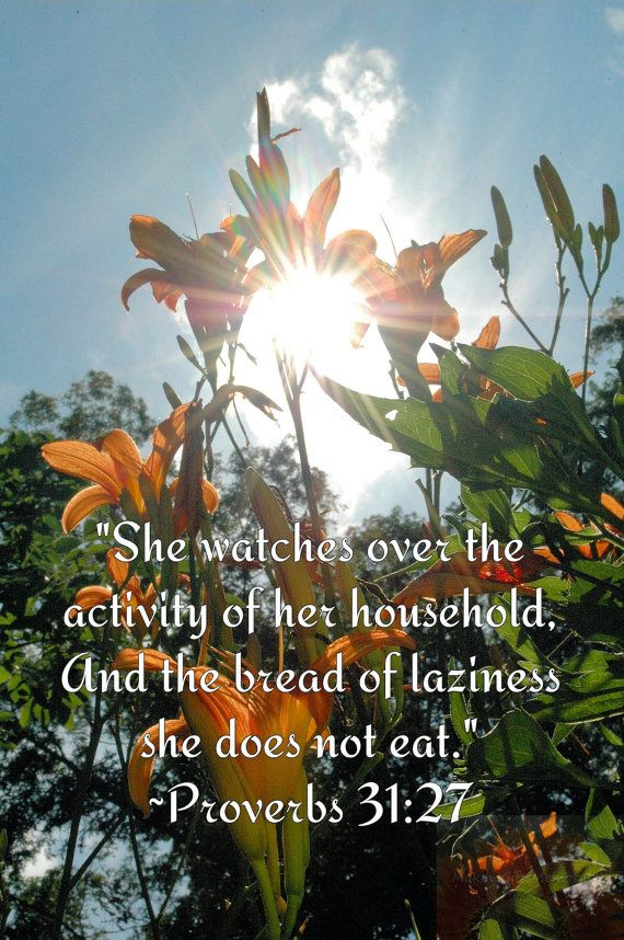 Proverbs 3127 Lily Photograph by MakingGiftsMemorable on Etsy, $2.00
