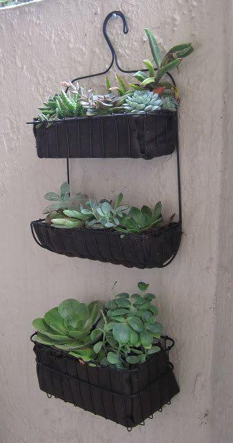 Hacer un jardín de suculentas usando un carrito de la ducha. | I Tried 7 Pinterest Garden Hacks For Beginners