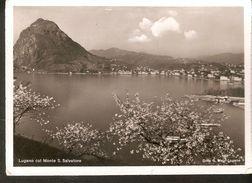 k2. Switzerland Lugano col Monte S. Salvatore Ditfa Mayr-Lugano Strandhotel  Seegarten posted postcard | For sale on Delcampe