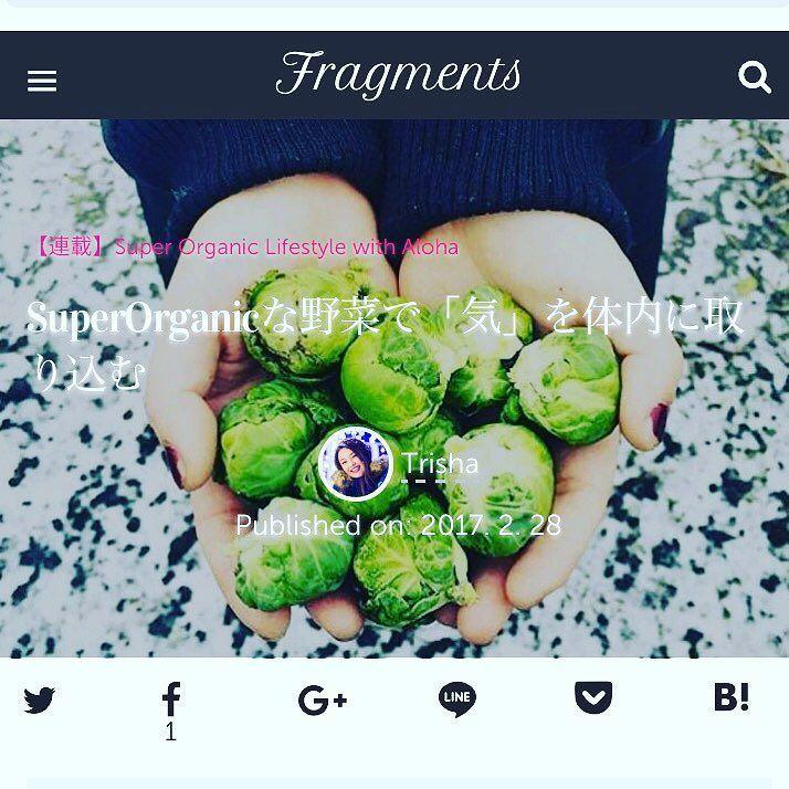 Feb edition of my article for @superorganicfoods on fragments is up and posted Link in the bio . 私が書いた @superorganicfoods の2月の記事がfragmentsにUPされていますリンク先は上のプロフからどうぞ . #superorganic #organic #orientalmedicine #qi #東洋医学 #気 #オーガニック #onairpersonality #partymc #hulagirl #selfdiscoveryjourney #sapporo #hokkaido #hawaii #aloha #ハワイ #アロハ #札幌 #北海道 #ラジオdj #司会者 #マッサージセラピスト #鍼灸師 #通訳 #ライター#フラガール #ロコガール