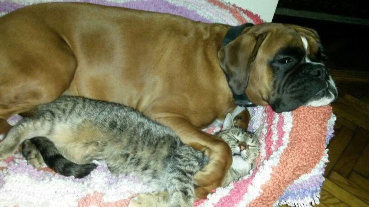 Kaya + Laly = love
