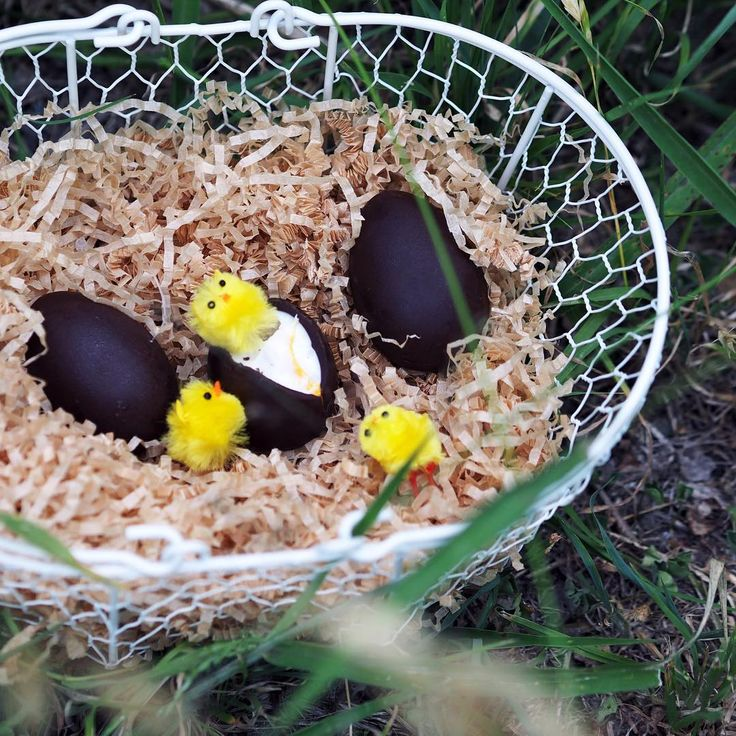 "Vegan Creme Eggs for Easter ""This Easter make your vegan Easter egg hunt egg-stra special with some of our sweet Easter treats! Preorder some Dream Eggs and Coconut Rough filled eggs…"""
