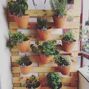 Quem gosta de jardins verticais? Cada vez mais, os jardins estão a ganhar destaque. Quer seja, para dar mais vida à sua casa ou apartamento, quer seja para dar um toque mais especial na sua comida, a ideia é que os consiga ter em sua casa, mesmo que esta seja pequena. Aqui ficam várias opções para montar um jardim suspenso! #oleomac #oleomacportugal #OM #jardim #jardimvertical #espaçospequenos #apartamento #casa #exterior