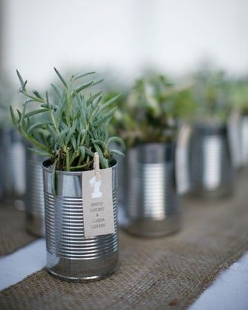 herbs in a tin can favor - cute, seems like it'd be cheap. So paint the outside of the can your wedding colors and use them as your centerpiece and wedding favors. So you have less clean up. Great idea.