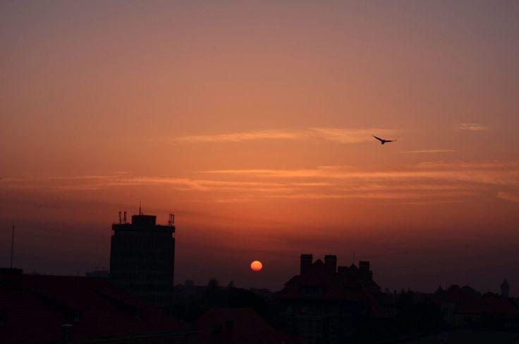 5th floor sunset | Timisoara