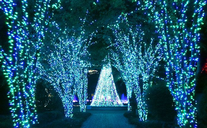 20 Best Images About Bellingrath Gardens On Pinterest Gardens Christmas Images And Longwood