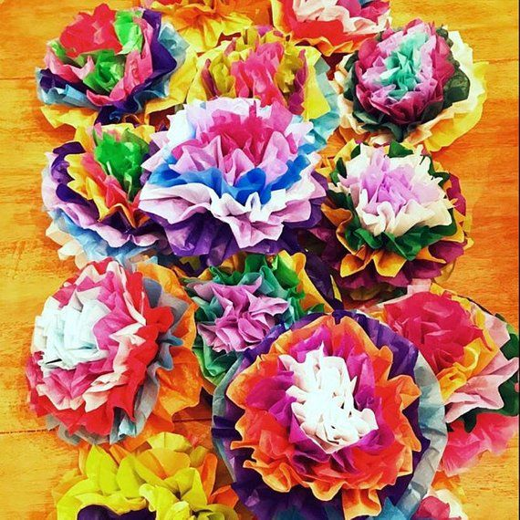 Mexican Paper Flowers Photo Wall Tissue Pom Poms Multicolor Set