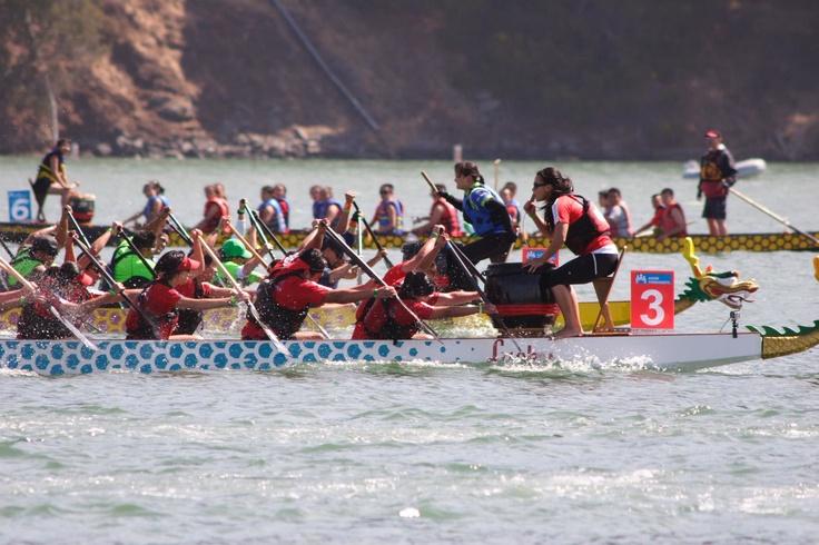 Dragonboat Race at Treasure Island in San Francisco