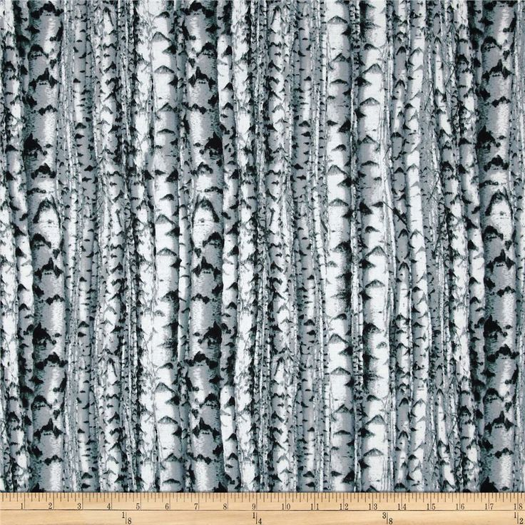 Northwoods Birch Trees Black