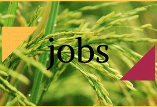 JOBS: Monitoring and Evaluation Assistant (1) and Association Development Field Officer (1)