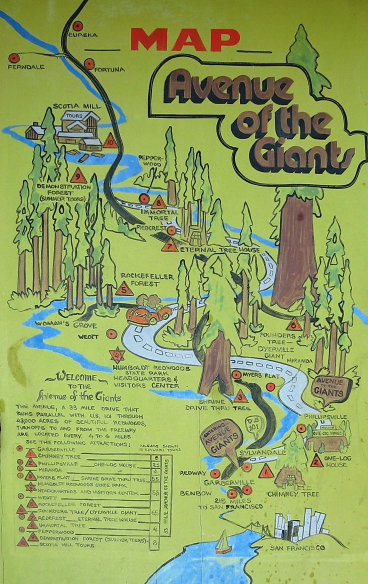 map of the avenue of giants