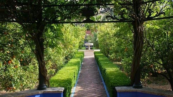 El jard n mediterr neo de l 39 albarda cuidar de tus - El jardin mediterraneo ...