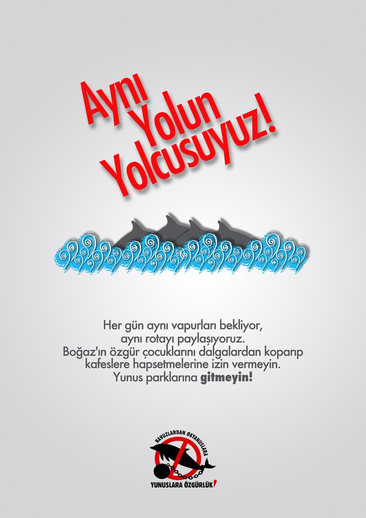 Aynı Yolun Yolcusuyuz.  www.yunuslaraozgurluk.com