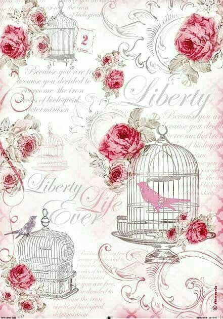 Fondo Vintage rosas con pajaro en jaula