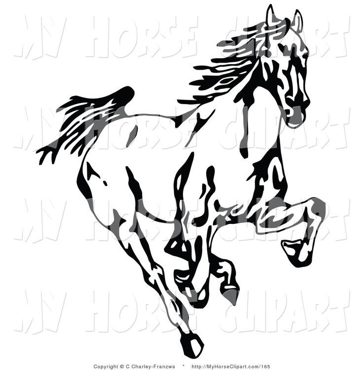 12 best horses images on pinterest clip art illustrations and horse rh pinterest com