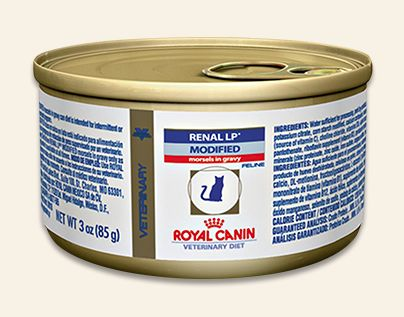 Royal Canin Renal Lp Modified Canned Dog Food