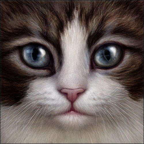 Brown Tabby and White Cat Face by ~Wynnyelle on deviantART