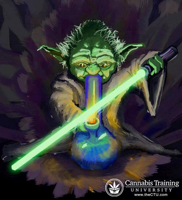 How happy he is! | cannabistraininguniversity.com