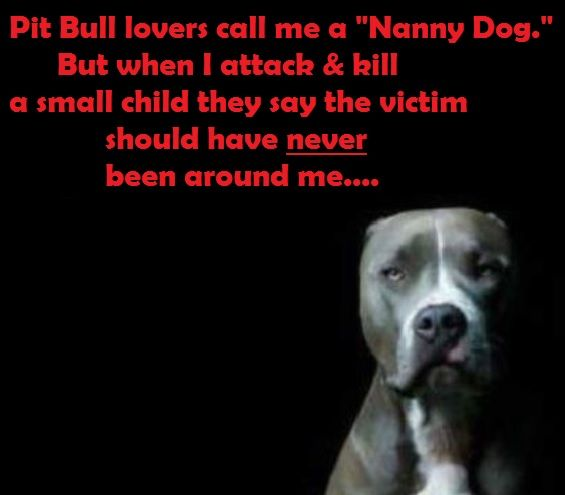 33 Best Pit Bull Victims Images On Pinterest