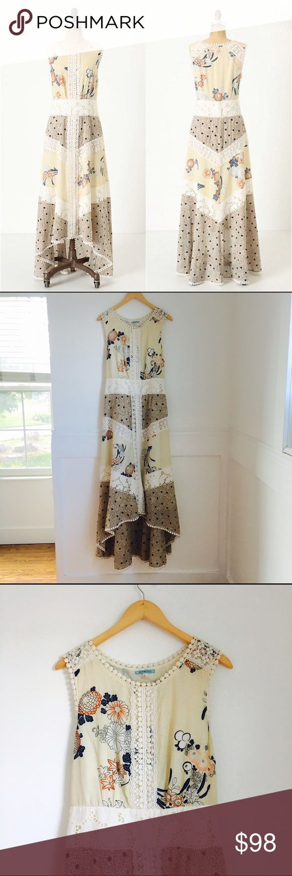 Field biology maxi dress