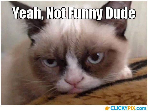 Funny Not Meme : You re not funny serious face meme pictures