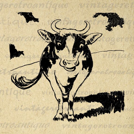 Digital Graphic Cow Image Farm Animal Download Printable