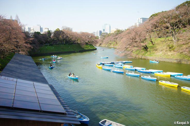 Chidorigafuchi : sakura au cœur de Tokyo - http://www.kanpai.fr/japon/chidorigafuchi-sakura-tokyo.html