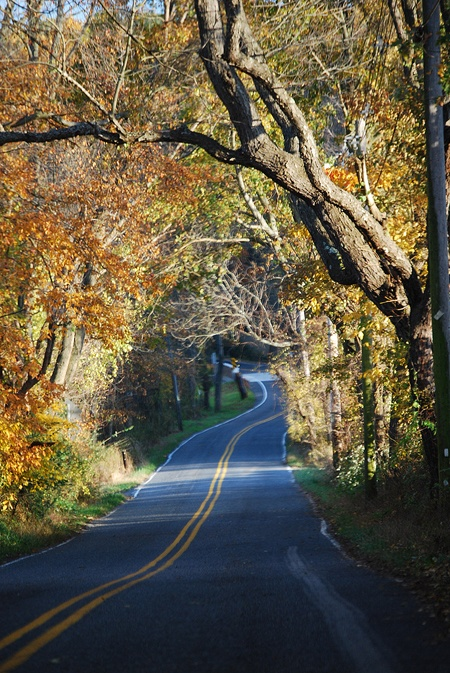A Chester County, Pennsylvania back road in the fall.