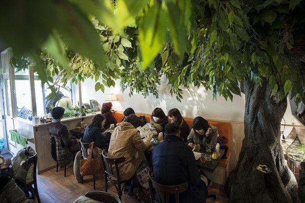 Bird Cafe @Kiba