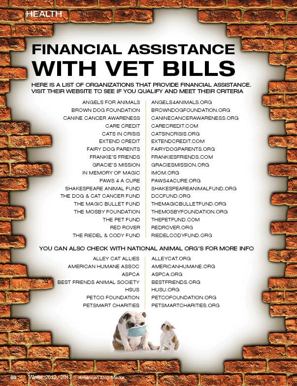 Resources Veterinary Bills Financial Assistance - Non-Profit - The American Dog Magazine