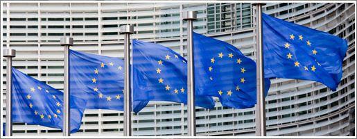 """L'initiative citoyenne européenne """"Stop vivisection"""", visant à mettre un terme à l'expérimentation animale en Europe, a franchi une première étape décisive. Mais le chemin est encore long avant que les millions d'animaux victimes de la science soient épargnés. Les explications de 30millionsdamis.fr."""