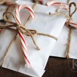 candy cane, paper bags, and twine make a simple wrap